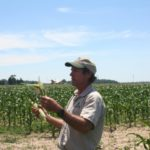 Mike Inspecting Sweet Corn