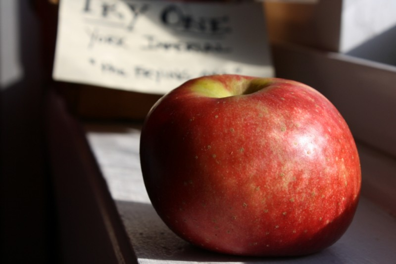 York Imperial Apples