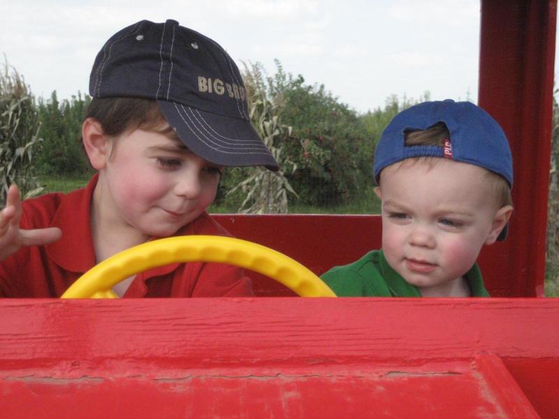 Kids Farm Play Area