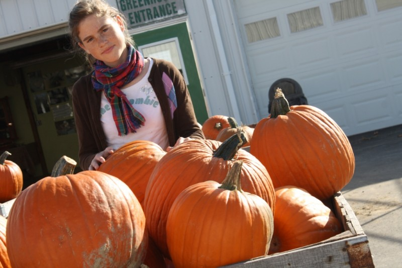 Pumpkin Patch Indianapolis