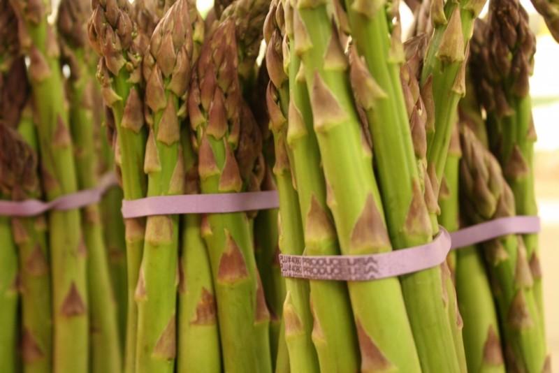 Indianapolis Asparagus
