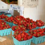 Strawberries Fishers