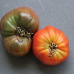 SFC_tomato_heirloom