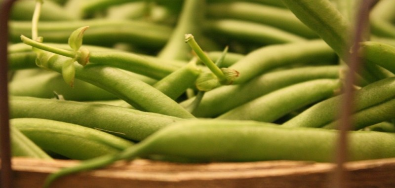 Blue Lake Green Beans