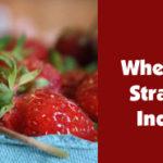 where can i pick my own indiana strawberries