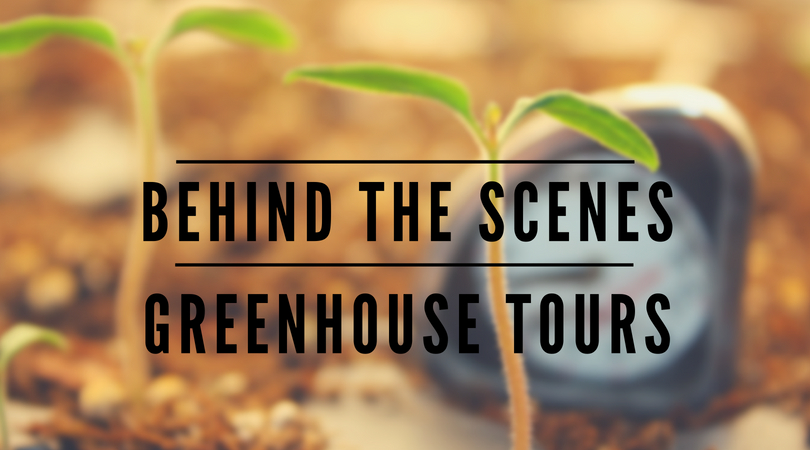 behind the scenes greenhouse tours