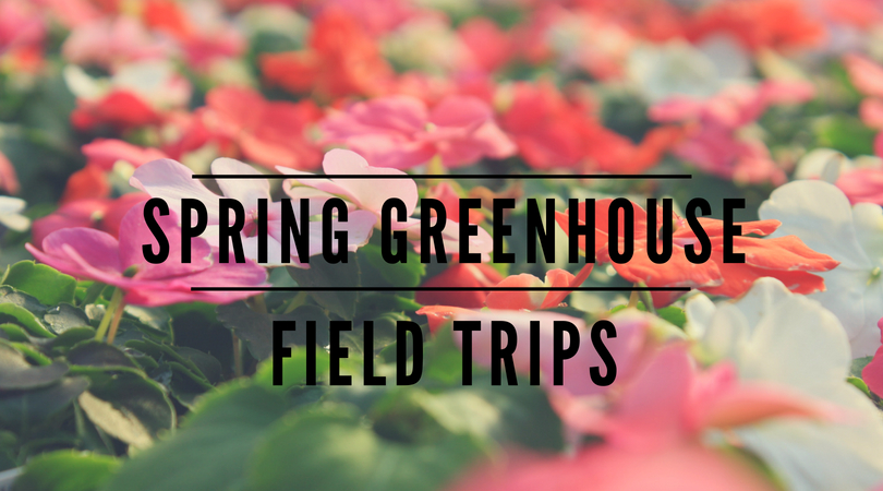 spring greenhouse field trips