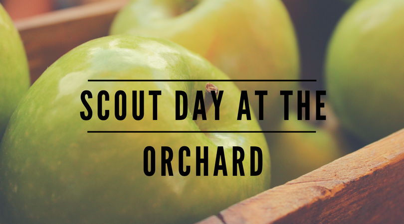 scout day at the orchard