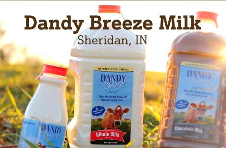 dandy breeze milk