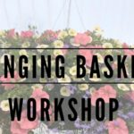 hanging basket planting class